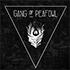 Gang-of-Peafowl – Groupe Indie Rock